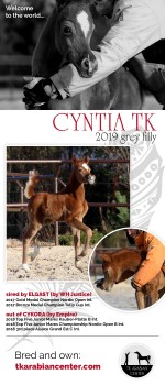 WELCOME TO THE WORLD - CYNTIA TK