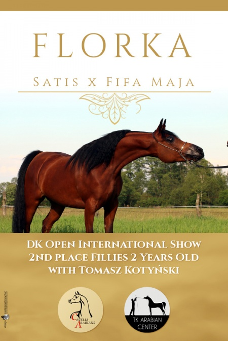 FLORKA - 2 place Fillies 2 Years Old DK Open International Show, Denmark 2017