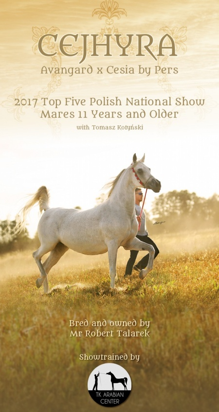 CEJHYRA - Top Five mares 11 years and older (90,17), Polish Nationals 2017