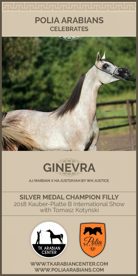 GINEVRA - Silver Medal Champion Filly Kauber-Platte B International Show Germany