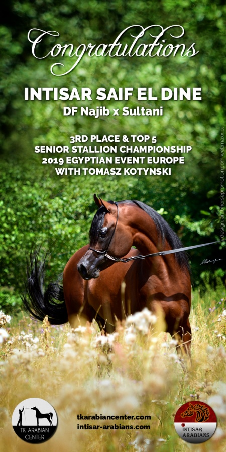 INTISAR SAIF EL DINE - 3rd and Top Five Championship 2019 Egyptian Event Europe