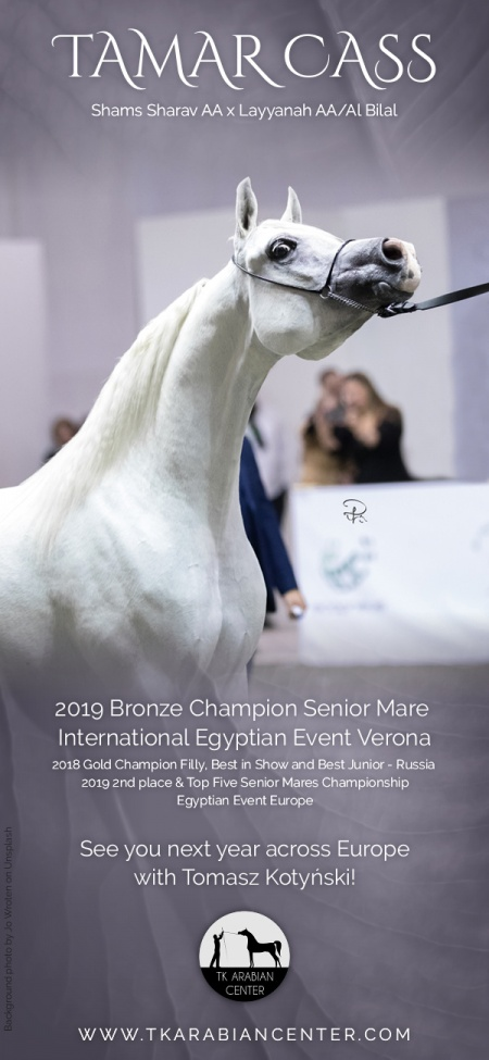 TAMAR CASS - 2019 Bronze Champion Senior Mare - International Egyptian Event Arabian Dream Verona with total 91,13pts